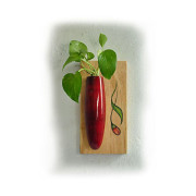 Wall Hanging Plant Holder Red